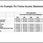 6+ Pro Forma Financial Statement Template
