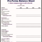 9+ Pro Forma Financial Statements Template