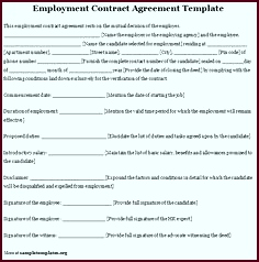 Printable Sample Employment Contract Sample Form wewwi
