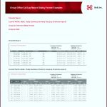 7 Monthly Report format Templates