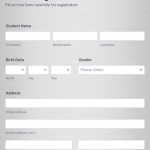 10+ Access Data Entry Form Template