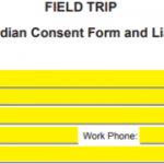 16+ Trip Consent Form Template