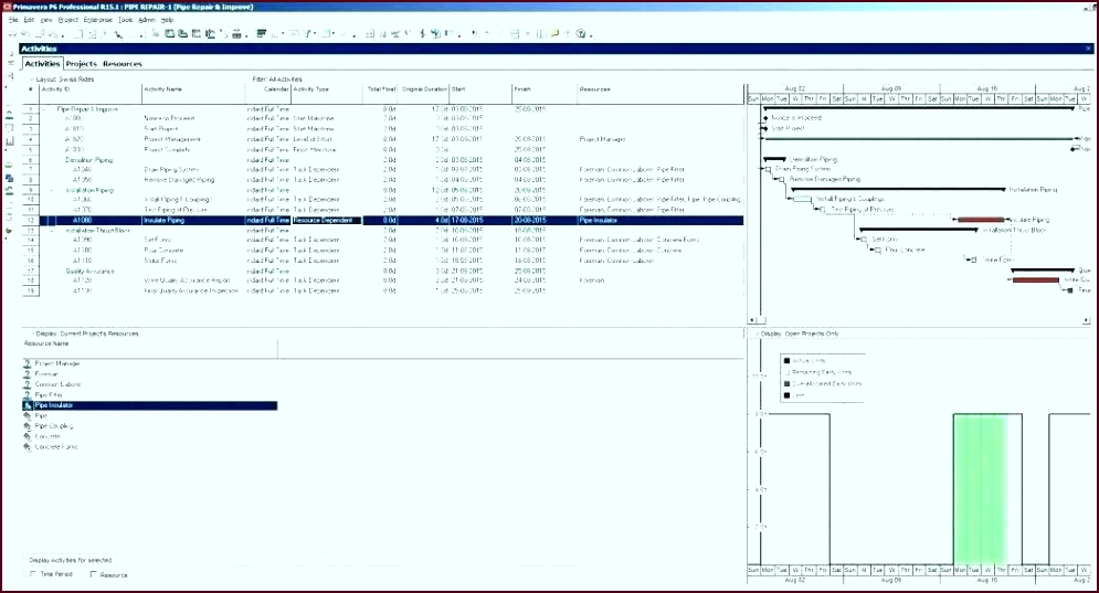 project expenses template excel free bud for cost tracker analysis finance ouuet