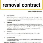 13+ Residential Snow Removal Contract Template