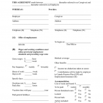 22+ Nanny Contract Template Word